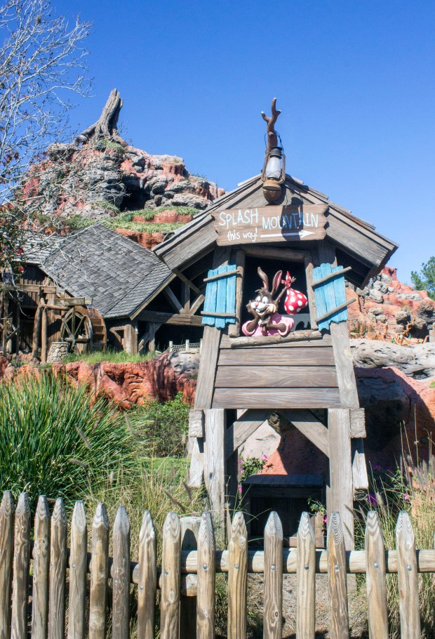 A great place to look for a laughin' place is Splash Mountain in Frontierland at the Magic Kingdom of Walt Disney World. (Photo by Mark Eades, Orange County Register/SCNG)