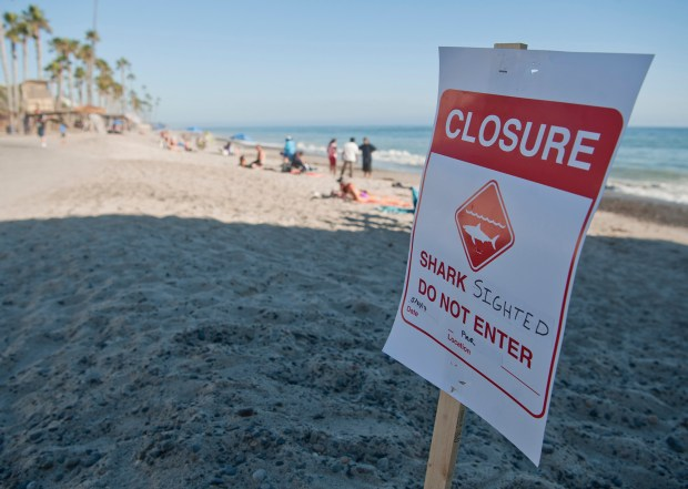 Closure signs like this one are posted when a shark is spotted and lifeguards close the water to surfers and swimmers.Photo By Jeff Antenore, Contributing Photographer