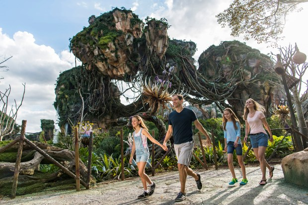 Floating mountains grace the sky while exotic plants fill the colorful landscape inside Pandora - The World of AVATAR, at Disney's Animal Kingdom. (Photo courtesy: Walt Disney World Resort)
