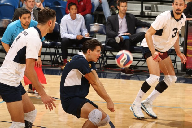UC Irvine libero Dillon Hoffman of San Clemente was named American Volleyball Coaches Association Honorable Mention All-American, the organization announced May 1.(Photo courtesy of UC Irvine Athletics)