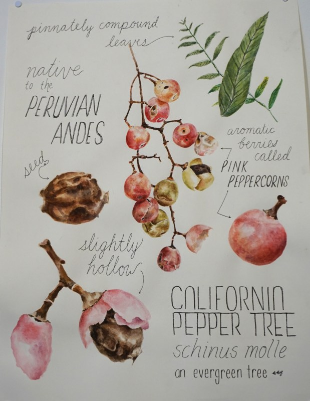 """""""Pink Peppercorn Tree"""" by Monica Tan of University High School was awarded third place in the High School Art Exhibition hosted by the Irvine Fine Arts Center"""