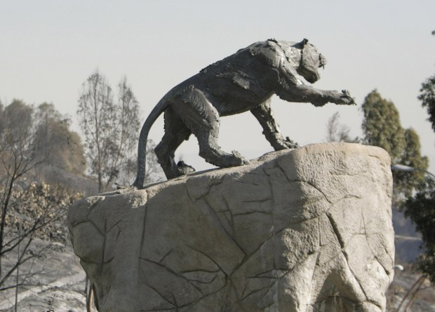"""The Wildcat"" sculpture at Brea Olinda High. (File photo by Bruce Chambers, The Orange County Register/SCNG)"