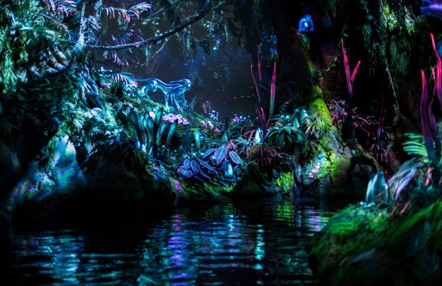 The Na'vi River Journey attraction on Pandora – The World of Avatar at Disney's Animal Kingdom takes guests on a lyrical adventure sailing in reed boats down a mysterious, sacred river hidden within the bioluminescent rainforest. (Photo courtesy: The Walt Disney World Resort)