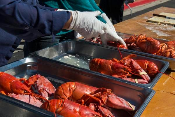 FILE FROM AUG. 8, 2013 - Lobsters are prepared for serving at the 5th Annual Lobsterfest at Newport Dunes in Newport Beach Saturday. 1,300 pounds of lobsters were flown in fresh from Maine for the event.