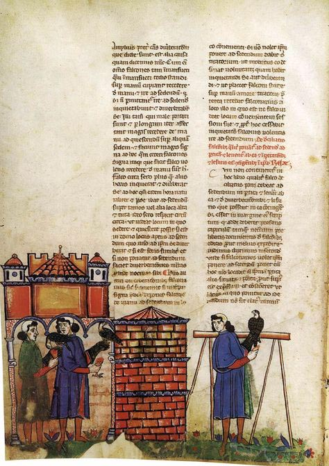 "This illustrated page is in the book ""De Arte Venandi cum Avibus"" or ""The Art of Falconry,"" which was written in about 1240. A facsimile copy is on display in the ""Featured Friends"" exhibit. (Photo courtesy of Biblioteca Apostolica Vaticana)"