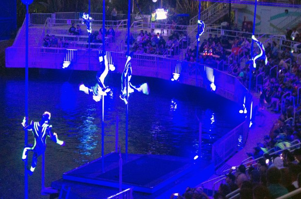 """Acrobats climb poles above the water during the """"Cirque Electrique"""" night time show at SeaWorld San Diego. (Photo by Mark Eades, Orange County Register/SCNG)"""