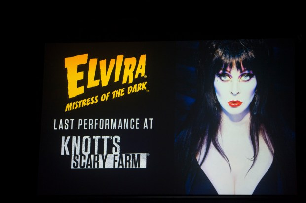 Elvira will give her final performance at Knott's Scary Farm in Buena Park on Thursday, August 31, 2017. (Photo by Matt Masin, Orange County Register, SCNG)
