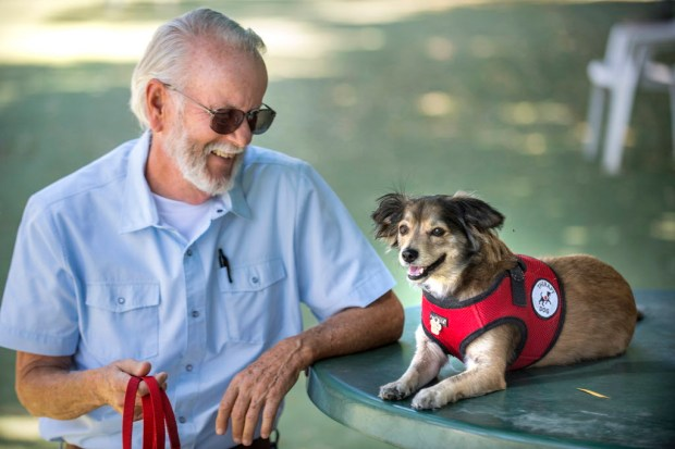 Ron Galbraith of Laguna Woods takes a break at a table in the shade with his dog, Logan, at A Place for Paws dog park on Ridge Route in Laguna Woods Thursday morning, August, 17, 2017. The Laguna Woods City Council unanimously voted to temporarily reopen e after its closure on Sunday, Aug. 13, The park will be open for at least 60 days while officials look for alternative locations and partnerships. (Photo by Mark Rightmire, Orange County Register/SCNG)