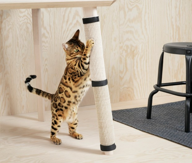 IKEA has gone to the dogs ... and cats. The retailer has debuted Lurvig, a line of pet furniture, for Fido and Fluffy. The affordable lineup includes sleek pet beds, nooks in bookcases, perches and carrier cases. Prices range from $5.99 for a small cat house to $50 for a pet bed. (Courtesy of IKEA)