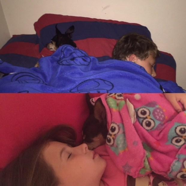 Lauren Turner's two children, son Gavin (above), 10, and daughter Ellianna (below), 7, sleeping next to Roxy. (Courtesy of Lauren Turner)
