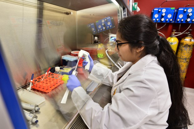Samiha Mahin is a student at Francisco Bravo Medical Magnet High School, and one of 600 students who has participated in the USC STAR/EHA program for aspiring scientists. Los Angeles, CA 11/1/2017 (Photo by John McCoy, Los Angeles Daily News/SCNG)