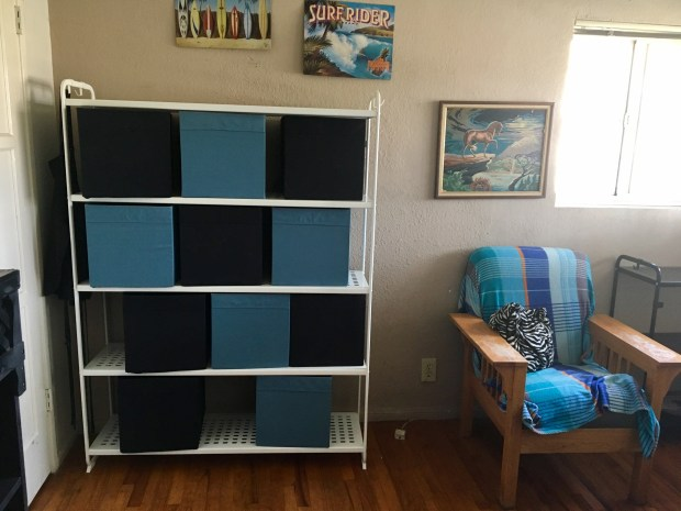 This simple shelving set didn't look expensive, until you add up all the impulse purchases you buy on the way out of IKEA to go with it. Photo: Marla Jo Fisher