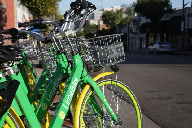 LimeBikes have become obiquitous throughout San Pedro. Chuck Bennett/Daily Breeze/SCNG