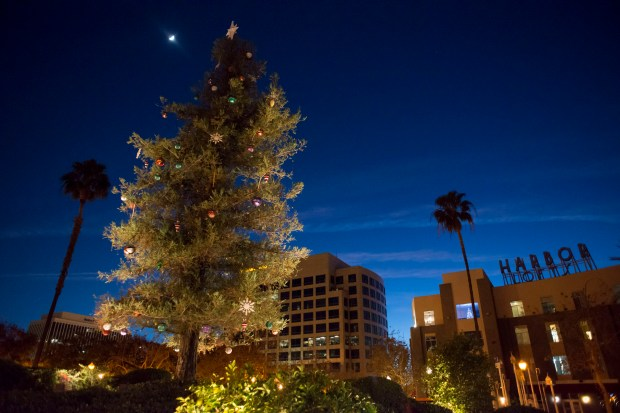 The Christmas tree stands tall at the end of the Center Street Promenade before it is lit at Anaheim's Nutracker Christmas Tree Lighting. The city's treelighting will be held again on Dec. 2. (Register file photo)