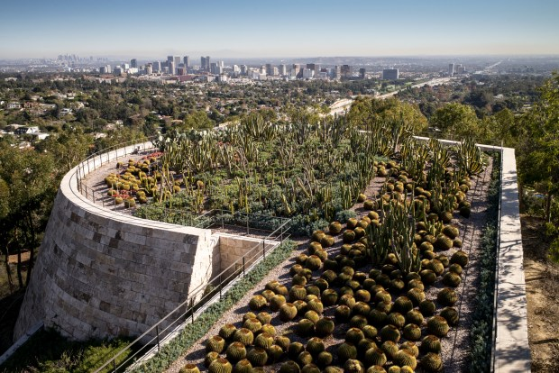 The sweeping view of Los Angeles from above the Cactus Garden at the Getty. The Getty Center celebrates it's 20th anniversary this month. (Photo by David Crane, Los Angeles Daily News/SCNG)