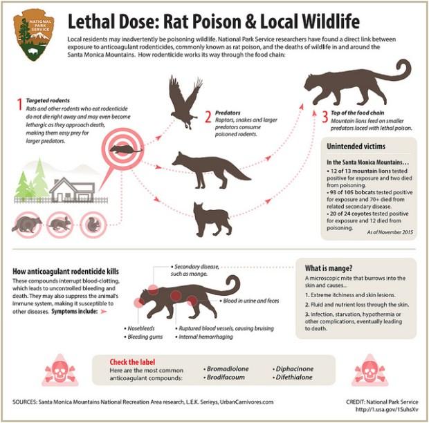 (Courtesy of National Park Service)