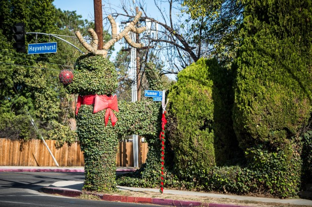 Brian Welch said he plans to keep trimming and decorating the poodle for as long as the telephone pole can handle the weight. (Photo by Sarah Reingewirtz, Pasadena Star-News/SCNG)