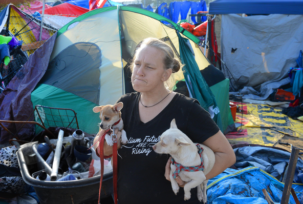 "Tammy Schuler has lived in the riverbed encampment for nearly three years alongside her brother, mom and daughter. Before that, she slept in parks in Anaheim and Stanton. She has five Chihuahuas, which she said she won't leave to sleep in a homeless shelter. Asked where she'll end up when her home is dismantled, she said, ""I don't know. Probably further down the riverbed."" (Photo by Bill Alkofer, Orange County Register/SCNG)"