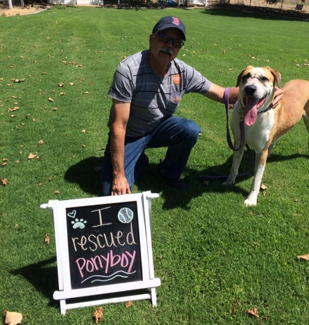 John Couturier adopted Pony Boy from Yucaipa Animal Placement Society. (Courtesy Photo)