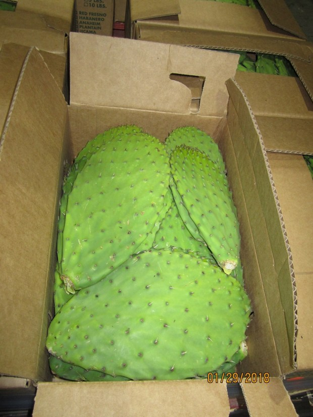 State officials on Wednesday, Feb. 14, warned Californians not to eat nopales imported from Mexico, packaged as Mexpogroup Fresh Produce, Aramburo or Los Tres Huastecos and sold at certain retail or wholesale sites including Stater Bros. stores, after finding some contained pesticides at levels carrying health risks. (Courtesy of California Department of Public Health)