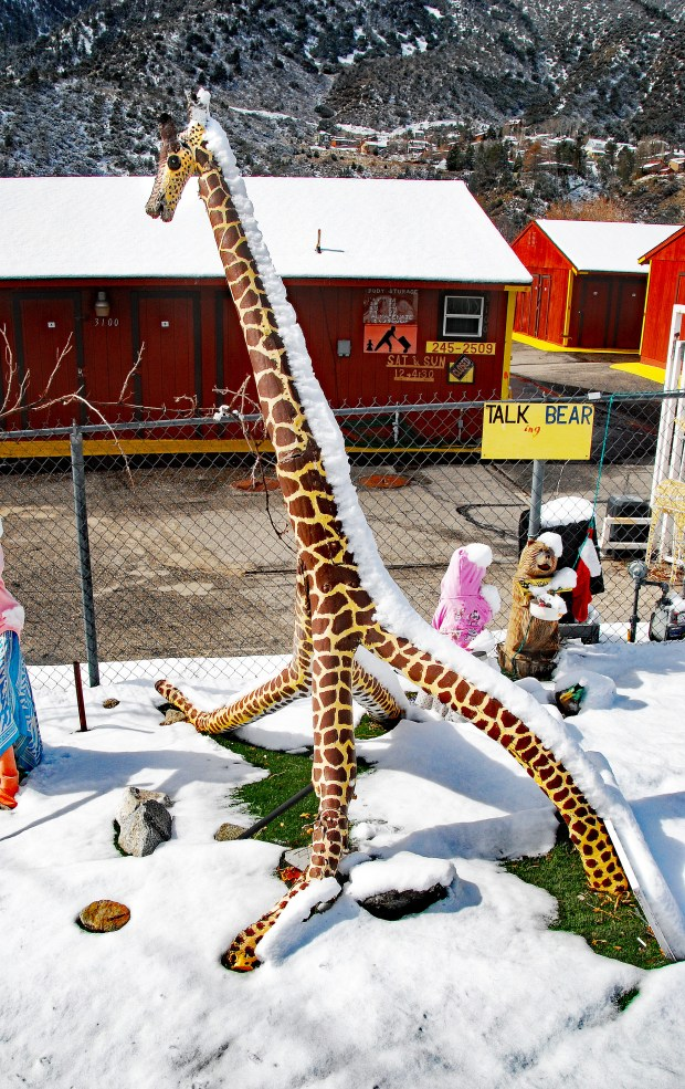 A giraffe in a nursery school front yard in Frazier Park has a snow mane after the latest snowfall left 3 to 4 inches in the Frazier Park, Gorman area. The next storm this coming week is expected to blanket the area with more snow. (Photo by Mike Meadows for the Los Angeles Daily News)