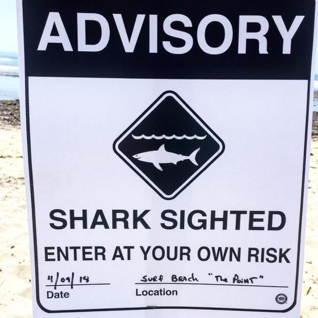 A shark sign posted at San Onofre State Beach this week as filming was happening for Animal Kingdom