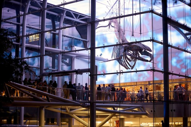 The Natural History Museum's half-year series First Fridays returns with behind-the-scenes tours, panel discussions, music and DJ sets. (Courtesy of the Natural History Museum of Los Angeles County)