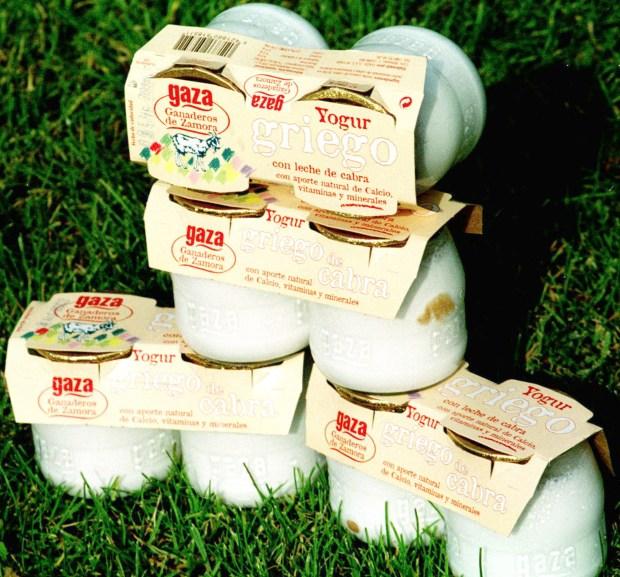 La cooperativa Gaza (Ganaderos Zamoranos) ha desarrollado este último año un proceso de diversificación de productos que les ha permitido introducir en el mercado nacional los primeros yogures y cuajadas de leche de oveja y cabra que se comercializan a nivel nacional. (EFE/JESUS DE LA CALLE)