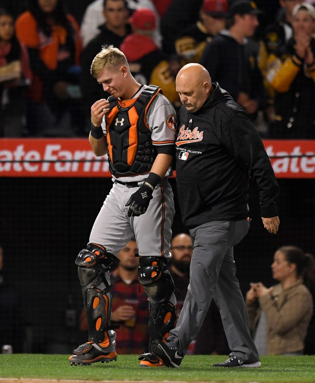 Baltimore Orioles catcher Chance Sisco, left, walks off the field with a trainer after colliding with first baseman Pedro Alvarez while trying to catch a foul ball hit by the Angels' Ian Kinsler during the seventh inning of a baseball game Tuesday, May 1, 2018, in Anaheim, Calif. Alvarez caught the ball and Kinsler was out. (AP Photo/Mark J. Terrill)