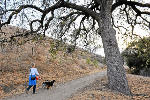 The proposed Rim of the Valley National Recreation Area would run from the Simi Hills, the Verdugo Hills, the Santa Monica Mountains, the San Fernando Valley and into the western part of the Angeles National Forest. Here, a hiker and her dogs make their way along a trail in the hills above Simi Valley Ca January 23, 2014.