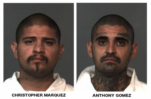 From left, Christopher Marquez and Anthony Gomez (Courtesy photos)