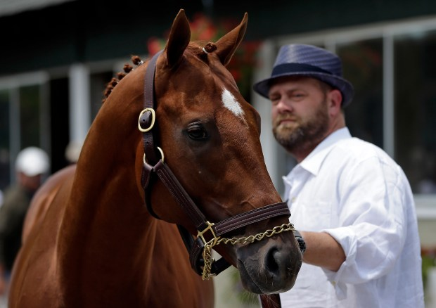 Kentucky Derby and Preakness winner I'll Have Another stands with trainer Doug O'Neill during a news conference at Belmont Park in Elmont, N.Y., on Friday, June 8, 2012. I'll Have Another's bid for a Triple Crown ended with the shocking news that the colt was out of the Belmont Stakes due to a swollen left front tendon. (Matt Slocum/The Associated Press)