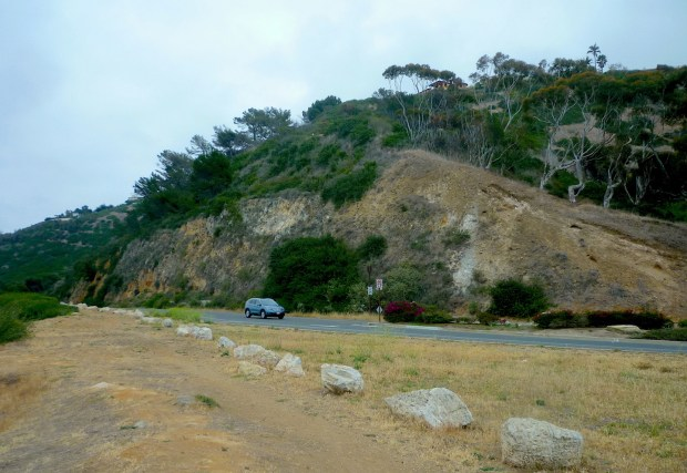 The Douglas Cut hillside area looking north on Palos Verdes Drive West is shown in this May 2018 photo.