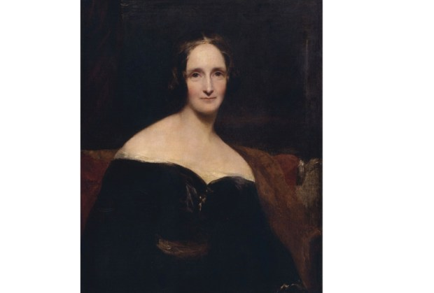 Shelley portrait
