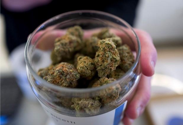 marijuana shops