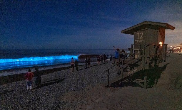 Feel funky after surfing, swimming or watching neon biolumenscent waves or daytime red tide?