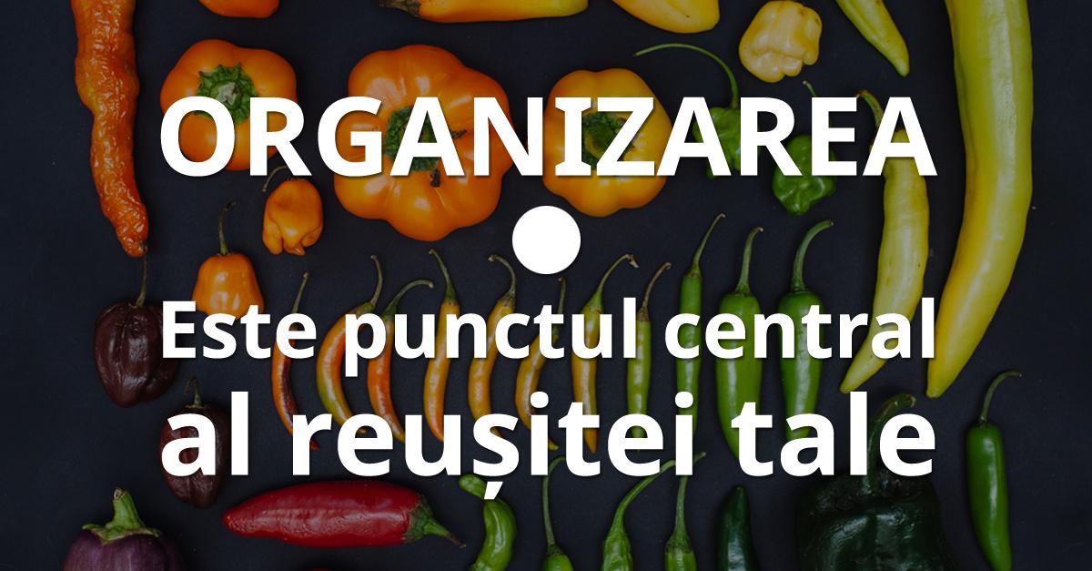 28 Organizarea