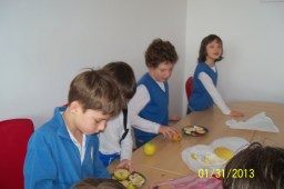 a treia zi salata de fructe (11)
