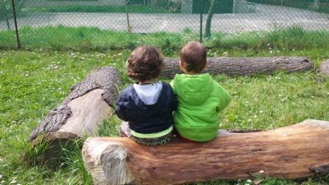 socializzazione nel parco