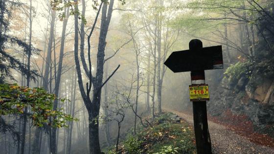 Trekking in Campigna bivio per rifugio Ballatoio camminata a piedi nel parco foreste casentinesi