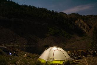 forest night avventura nel parco foreste casentinesi