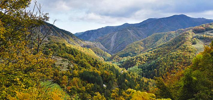 trekking di novembre scomfort zone Mattia Fiorentini guida ambientale escursionistica forli parco nazionale foreste casentinesi