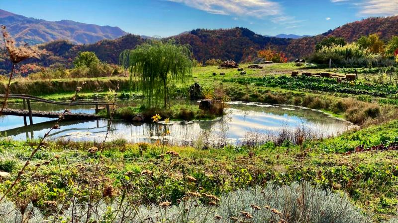 Fattoria dell'Autosufficienza Paganico Bagno di Romagna Macrolibrarsi trekking di Scomfortzone Nuove rotte di Mattia Fiorentini guida ambientale escursionistica