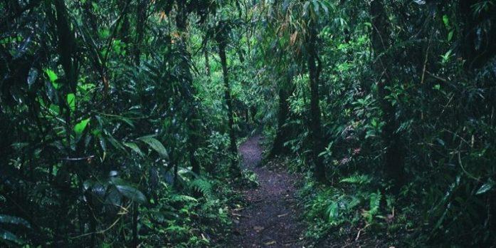 Leticia – La destinazione turistica dell'Amazzonia Colombiana