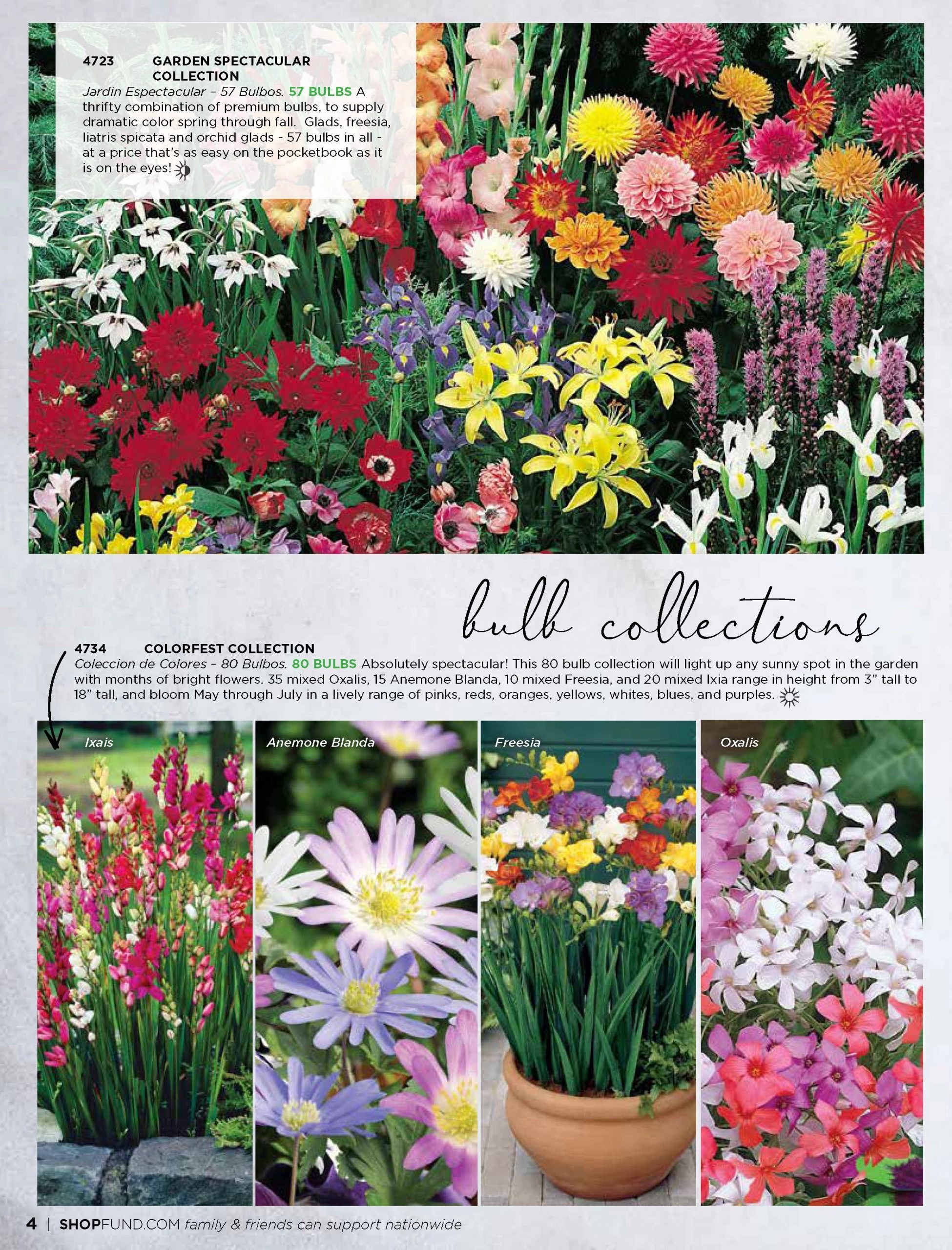 Believe Spring Catalog_Page_04