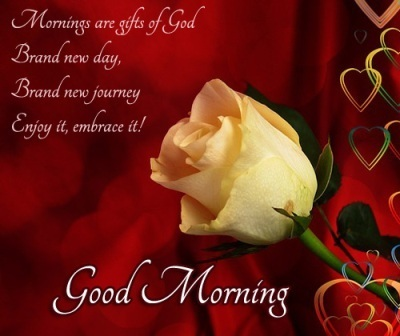 Good Morning SMS In English 2020 For Lover