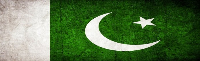 Pakistani-Flag-made-from-Rice-and-Peas [DVD (NTSC)]