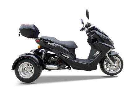 Trikes TRIFECTA PST50-2 50cc Trike