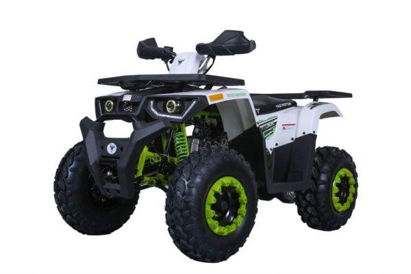 TAO MOTOR RAPTOR 200