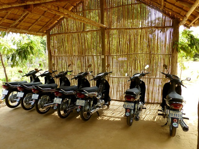 Scooters lined up for presentation